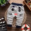 Muchachas de Los bebés Pantalones de Primavera Niños Ropa de Algodón Patrón de Los Gatos Del Bebé Pantalones Largos Pantalones Harén Niña Ropa Para Niños