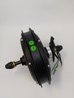 EVFITTING E bike Fatbike Motor 48Volt 1000W Brushless DC Hub Motor for Rear Wheel Fatbike 170mm Dropout