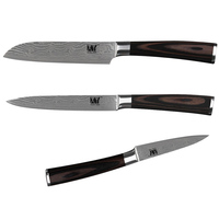 High Quality Kitchen Knives Set Fruit Utility Santoku Color Wood Handle Stainless Steel Knives Three Piece
