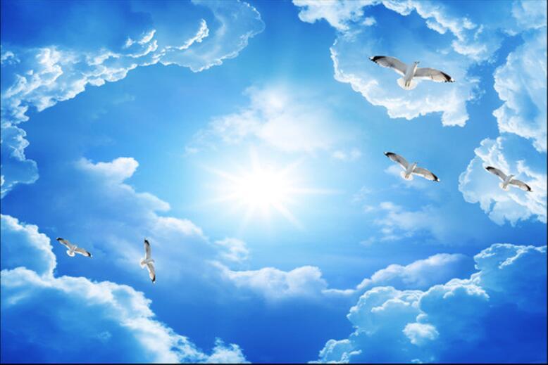 человек картинки небо с облаками и голубями дама без носа