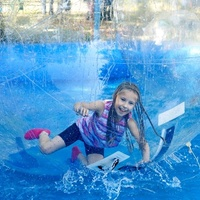 2M fun entertainment water ball, inflatable water walking ball Zorb Ball