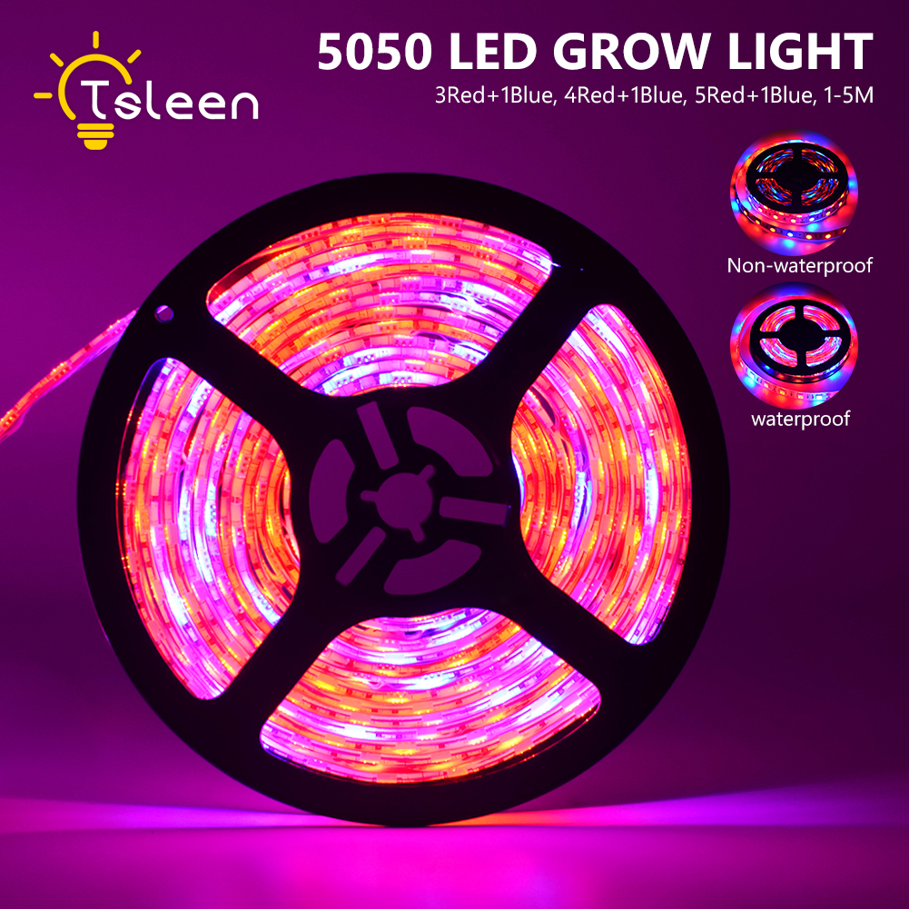TSLEEN LED Phyto Lamp 1M 2M 3M 4M 5M LED Strip Light 60LED/m 5050 Chip LED Fitolampy Grow Lights For Greenhouse Hydroponic Plant