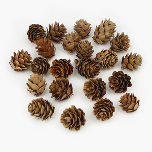 Image 2 - HUADODO 20Pieces Natural Dried flowers Pine cone Acorn Artificial Flower For Home Christmas DIY Garland Wreath Decoration
