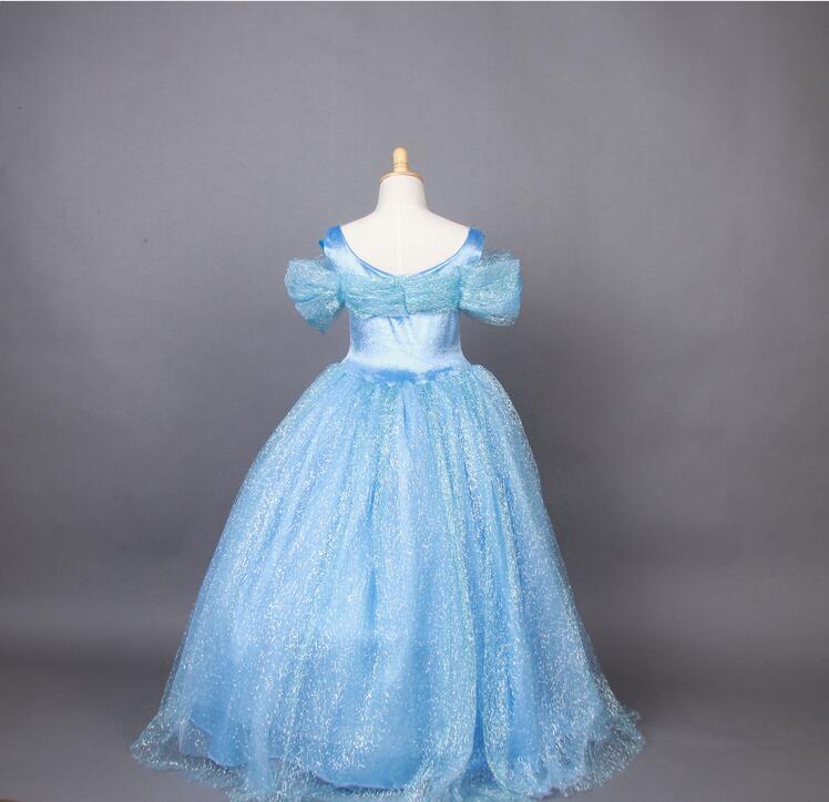Kids Girls Cinderella Blue Dress Costume 4 12 years Adult Girls ...
