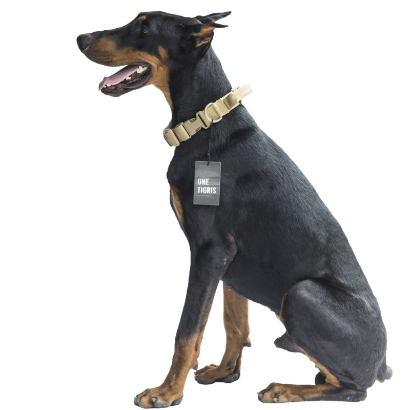 Dog Collar With Handle