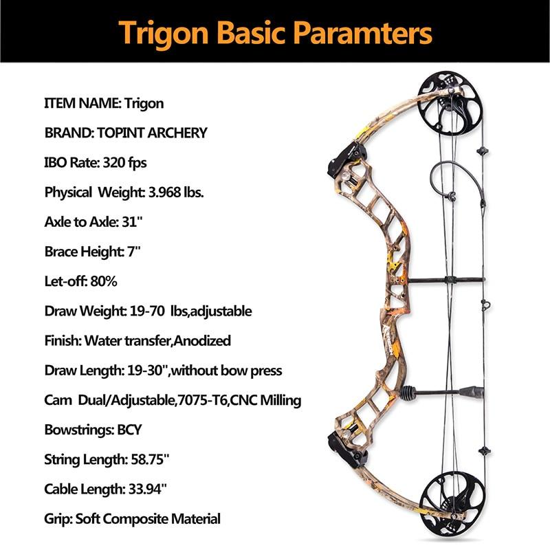 Trigon-information