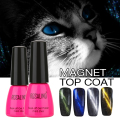 ROSALIND 7ML Cat Eyes Finish Gel Polish UV Top Coat Chameleon Magnet UV Nail Gel Polish  6 Style Magnetic Top Coat Rose Bottle