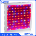 BestVA 1600W Full Spectrum Medical Plants LED Grow light Panel For plants veg bloom and fruit, Warehouse in US, DE, AU,UK