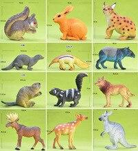 pvc figure Rare Wild Animal Model Kangaroo Squirrel Bobcat Water Otter Anteater Anteat Beaver Beaver Elk toy 12pcs/set