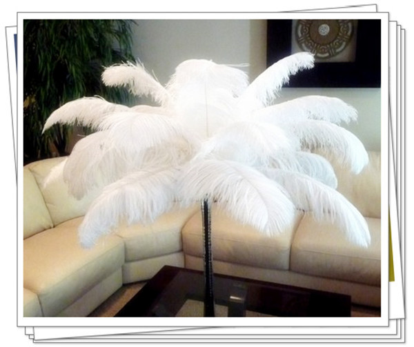 "Free shipping white and black 18""-20""/45-50CM ostrich feathers plumage flapper dresses for craft /DIY accessories 50pcs/lot"