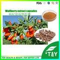 Medical Grade Goji Berry Pó do extrato/PE Lycium Chinense Mill/Goji Berry Cápsula 500 mg * 500 pcs