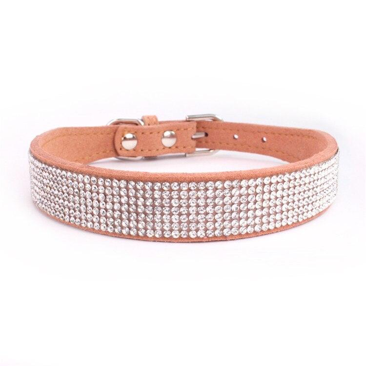 dogs collar (4)