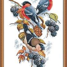 Красный животик сороки и ежевика Набор для вышивки крестиком aida 14ct 11ct граф печать холсты стежков вышивка рукоделие ручной работы