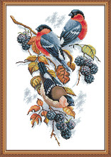 Red bellies Magpies and blackberries cross stitch kit aida 14ct 11ct count print canvas stitches embroidery handmade needlework(China)