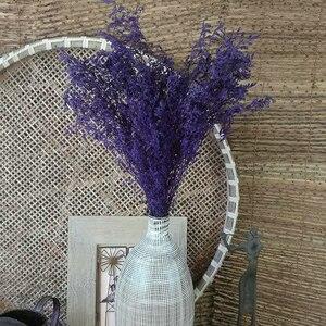 Image 3 - Bonita flor Natural pequeña flor seca para fiesta, hogar, dormitorio, sala de estar, oficina, decoración artesanal, libro de recortes de flores
