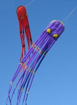NEW ARRIVE 3D HIGH QUALITY 3.6M POWER OCTOPUS SOFT KITES  FOR  KITE FESTIVA NOT WITH STRING
