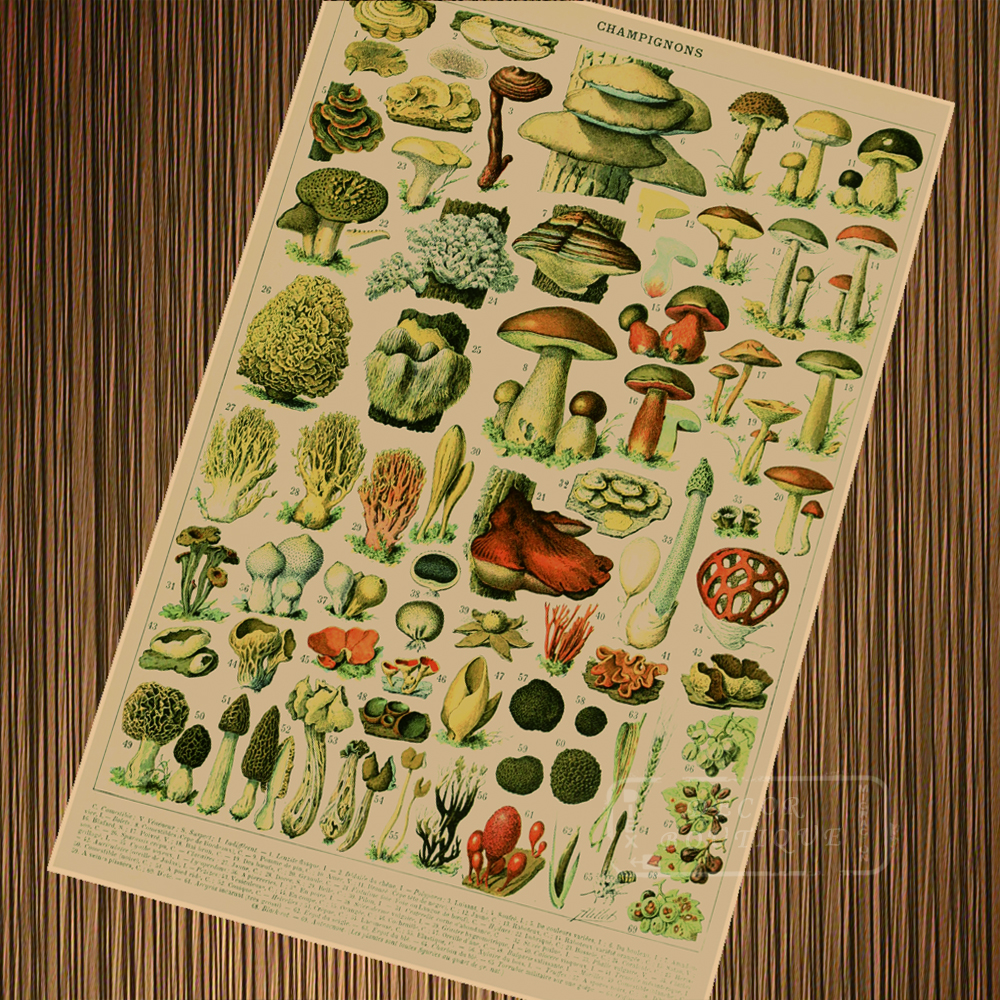 American Country Retro Flui Systems Plants Cloth Painting Scrolls ...