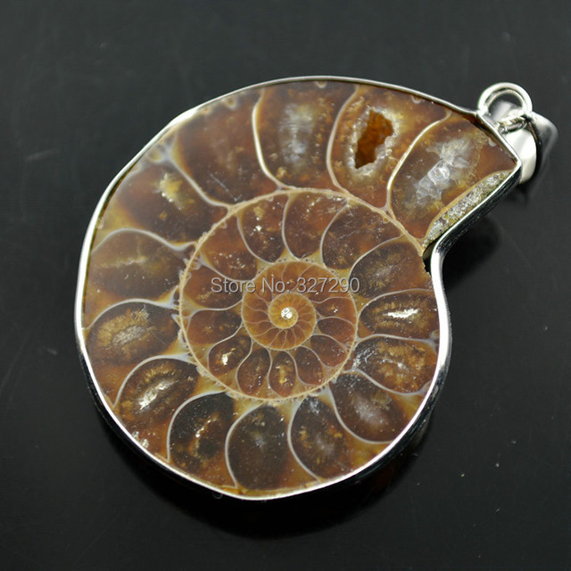 30mm natural nautilus fossil pendant pendant for women necklace 30mm natural nautilus fossil pendant pendant for women necklace making 10pclot mozeypictures Gallery