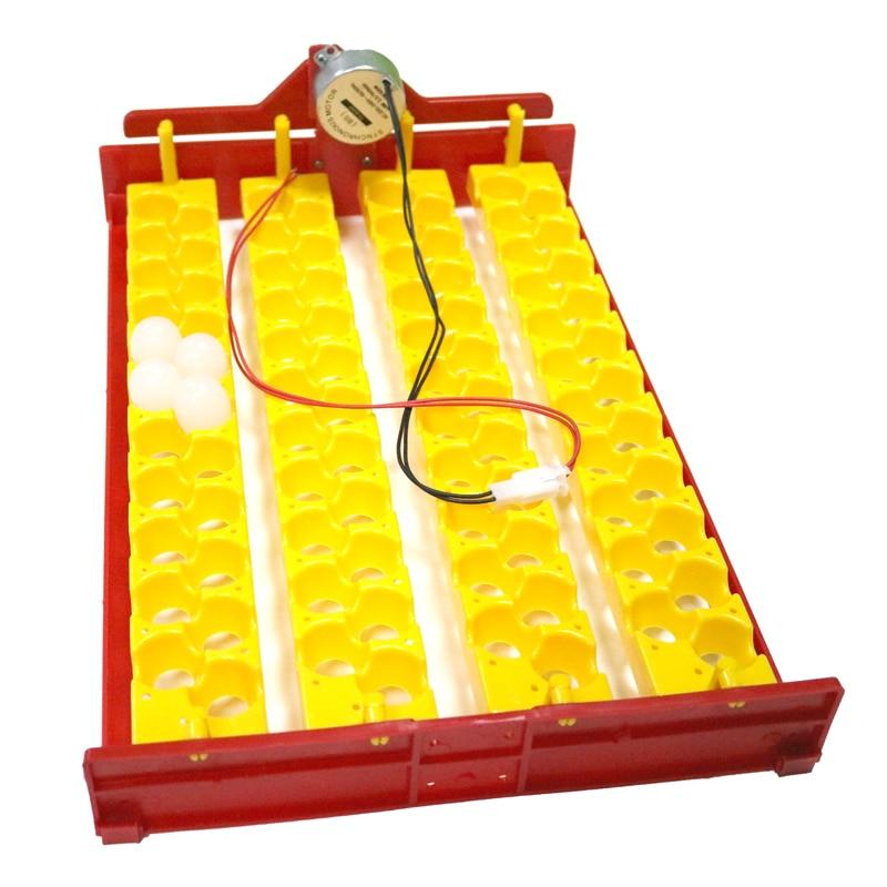조류 자동 배양기 88 계란 계란 트레이 비둘기 메추라기 앵무새 트레이 110V / 220V / DC 12V