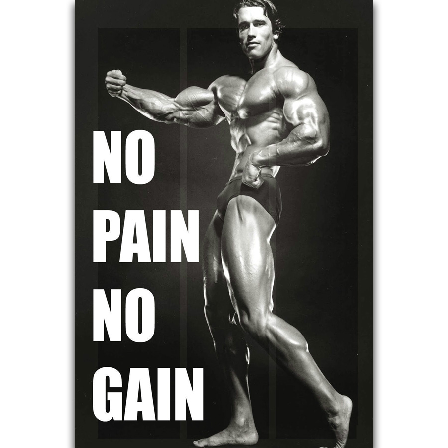 S2343 Arnold Schwarzenegger Fitness Inspirational Quote Movie Star Wall Art Painting Print On Silk Canvas Poster Home Decoration Painting Calligraphy Aliexpress