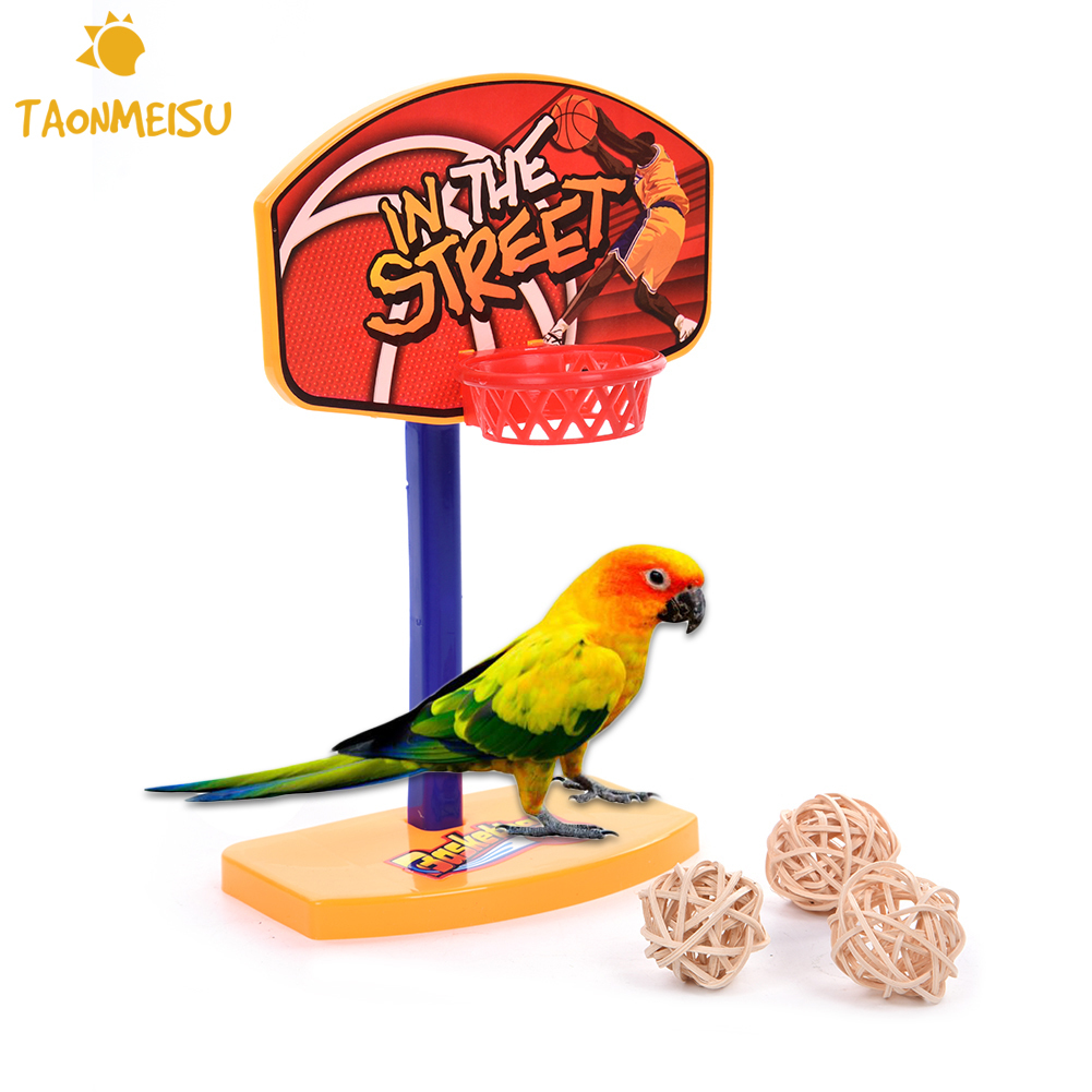 Bird Toys For Birds : Pet birds chew toy parakeet bell balls parrot toys birdie