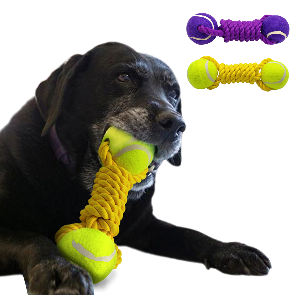 Ball On A Rope For A Large Dog