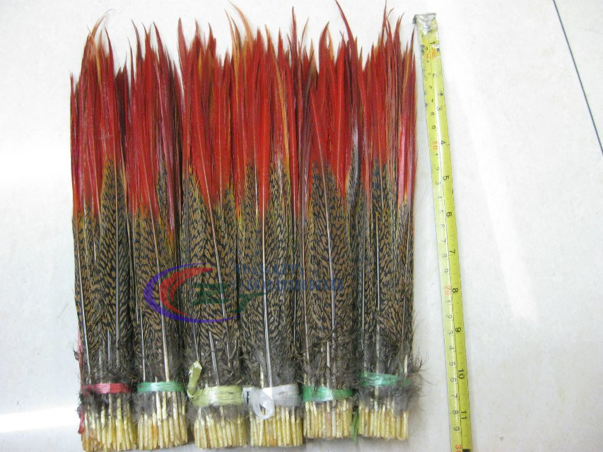 Wholesale 100 pcs Pheasant Feathers Gold Tail Red Sword Feathers 25 30 cm DIY Craft Jewelry