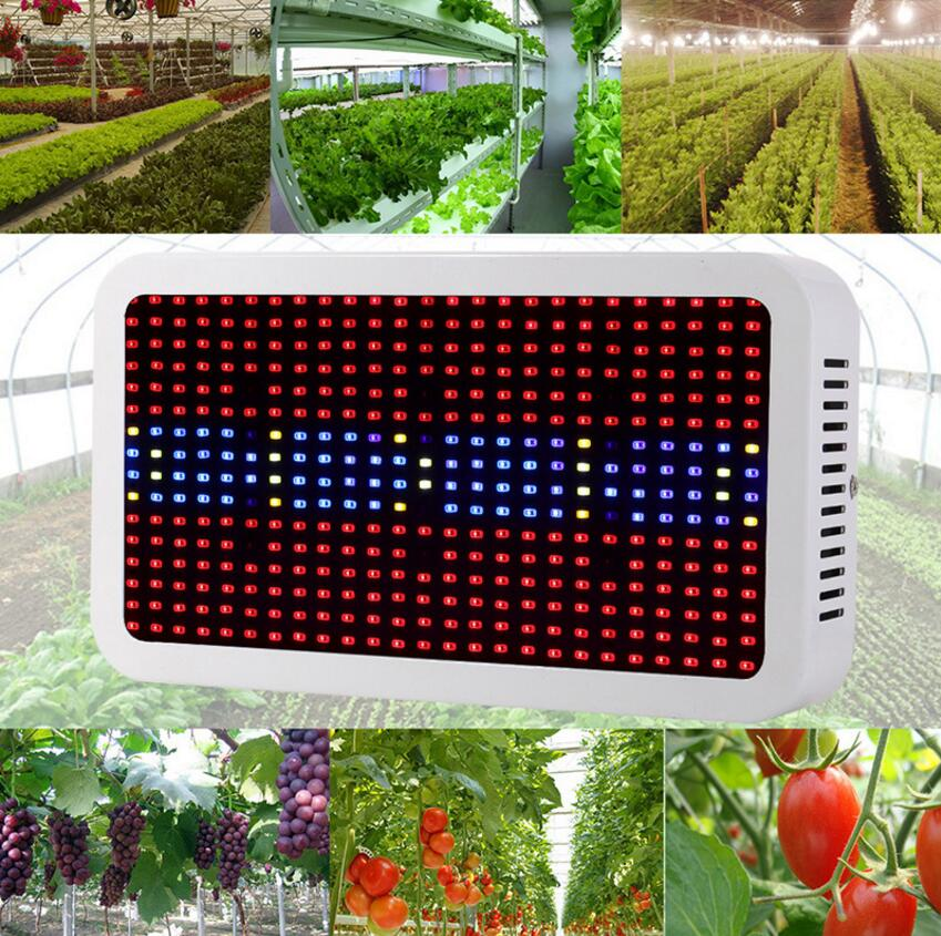 400W 600W 800W 1000W 1200W 1600W LED Grow Light Full Spectrum Red/Blue/White/UV/IR For Indoor Plant and Flower free shipping 600w double chip 100 leds red grow light full spectrum uv ir for indoor greenhouse plant and flower