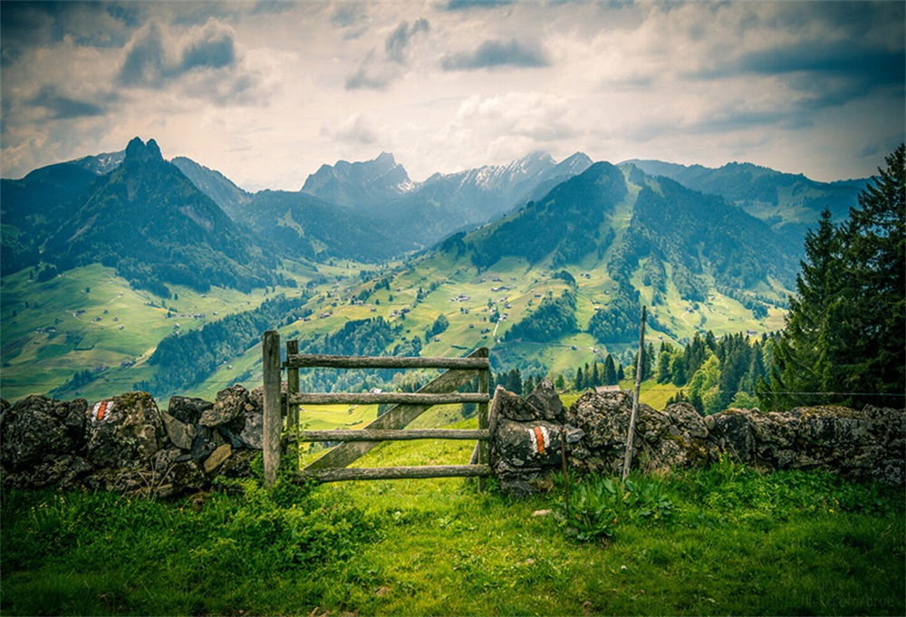 Laeacco Mountains Stones Fence Grass Sky Scenic Photography Backgrounds Vinyl Customized Photographic Backdrops For Photo Studio