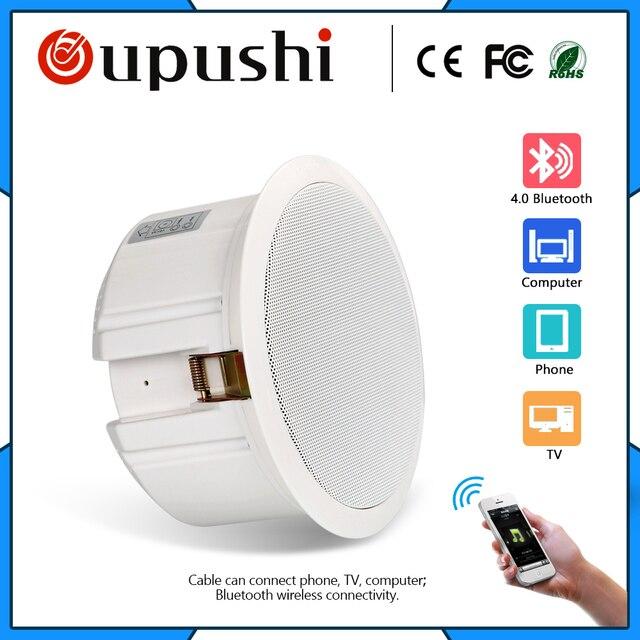 Bluetooth Altoparlante del Soffitto di casa sistemi di musica di sottofondo; Negozi; Uno speciale sistema di musica di sottofondo per saloni di bellezza