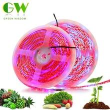 лучшая цена LED Plants Growing Strip 5050 Chip 300 LEDs Full Spectrum Plant Grow Lights Phyto Lamp for Greenhouse Hydroponic Plant Growth 5M