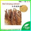 High Quality Pure Natural Extrato de Ginseng Vermelho Coreano em pó 500 g/lote