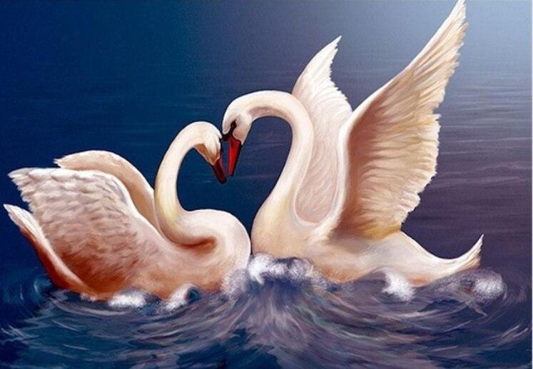 художественной лебеди картинки поздравления листовки ризографе недорого