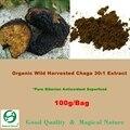 Siberian Chaga Mushroom 30: 1 Экстракт Порошок 100 г-Органический Экстракт Polyose