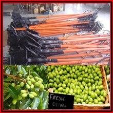 Низкая цена электрическое оливковое механическое устройство для сбора урожая выбора встряхиватель машина инструмент