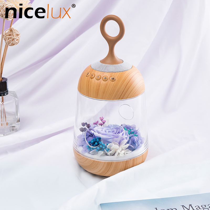 Rose Flower LED Night Light Rechargeable Battery Streamer Bottle Creative Gift for Girl Children Table Lamp free shipping plastic rechargeable battery illuminated christmas led snowman night table lamp led baby night light for gift