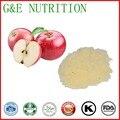 Fornecimento de fábrica natural apple peel extrato em pó apple extrato da fruta 500g