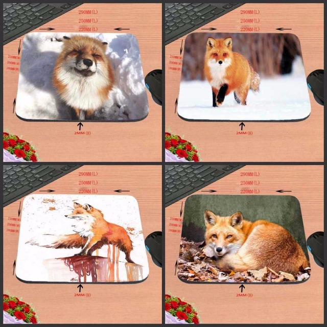 Mairuige Cheap Best Funny Animals Deserts Ear Fox Funny Custom Mouse Pad...