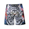 Pantalones cortos de verano hombres 3d panda gato shark imprimir shorts junta playa corto de bain homme troncos hombre shorts de baño