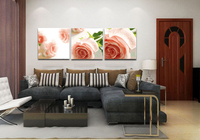 3 PCS Frameless DIY Oil Painting By Numbers Pink Roses Flowers Canvas Wall Pictures For Living