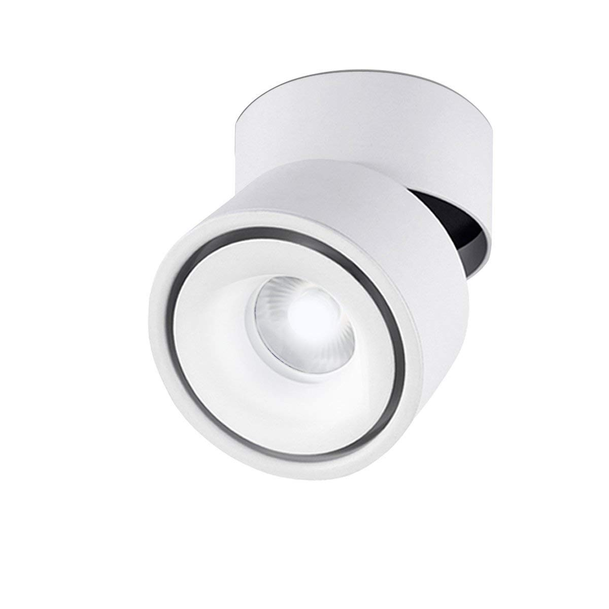 Indoor 10W LED Spotlight 360 degree Adjustable Ceiling Down light Surface Mounted COB Lighting Aluminum Wall