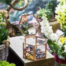 NCYP Desktop Display Succulent Fern Moss Plant Pot Handmade Geometric Glass Flowerpot Europe Style Plant Terrarium Box