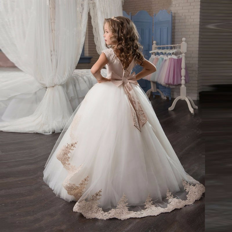 Romantic Champagne Puffy Lace Flower Girl Dress for Weddings Organza Ball Gown Girl Party Communion Dress Pageant Gown