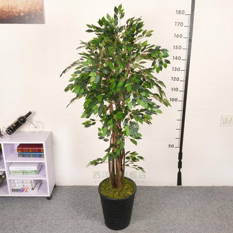 Online Get Cheap Silk Boden Pflanzen -Aliexpress.com | Alibaba Group