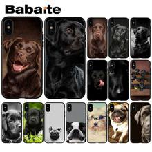 Babaite Black cute labrador dog Custom Photo Soft Phone Case for Apple iPhone 8 7 6 6S Plus X XS MAX 5 5S SE XR Cellphones(China)