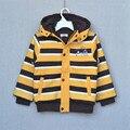 Niño menor de la alta calidad de rayas con capucha de la cremallera algodón cabritos de la capa de algodón acolchado chaqueta de primavera tamaño 100-140 envío gratis