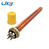 LJXH Copper DN25 1 Heating Element Electric Water Heater Parts 3KW 6KW 9KW 12KW 220V Heaters