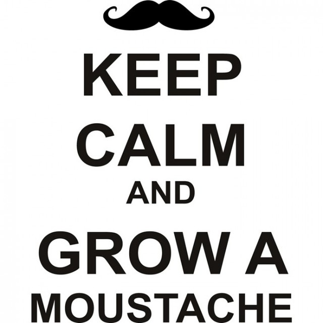 Diy Funny Wall Decals Quotes Keep Calm And Grow A Moustache Wall