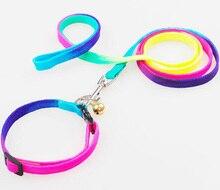 10 unids perros gatos de Colores collares de cuerda suministros de productos para mascotas perro collar correa traje de perrito perrito caminando al aire libre lleva collar conjuntos