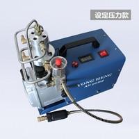 2017 New Arrival Set Up Pressure and Auto Stop Pcp PUMP 300bar 4500psi high pressure portable electric PCP air compressor